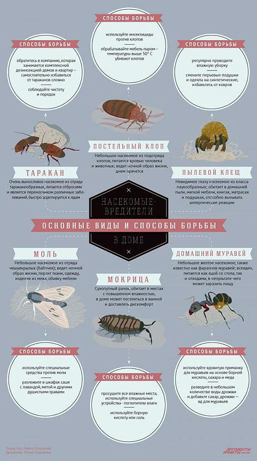 Способы борьбы с насекомыми